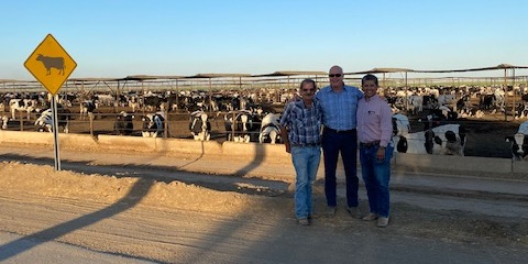 Farming, Ranching and Real Estate Lawyer