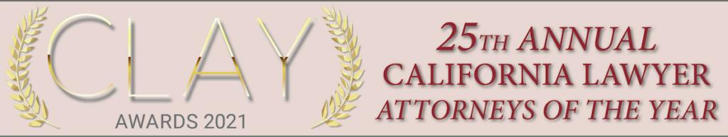 CLAY Award 2021 winner